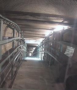 New City Hall'un asansör boşluğu