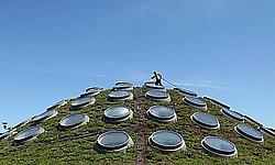 Kaliforniya Bilim Akademisi'nin yaşayan çatısı