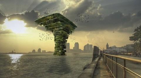 """""""Sea Tree"""" Deniz Ağacı"""